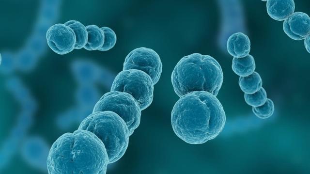 Стрептодермия у детей : фото, как начинается болезнь, чем лечить в домашних условиях?
