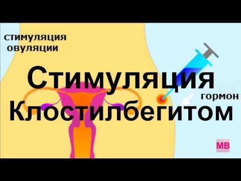 Клостилбегит: инструкция по применению для женщин и мужчин при планировании беременности