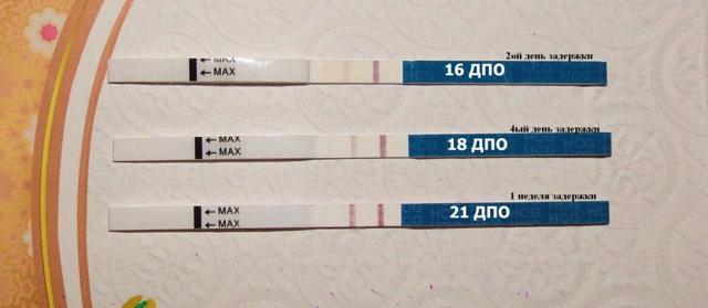 Может ли ХГЧ ошибаться на раннем сроке беременности, какова точность анализа?
