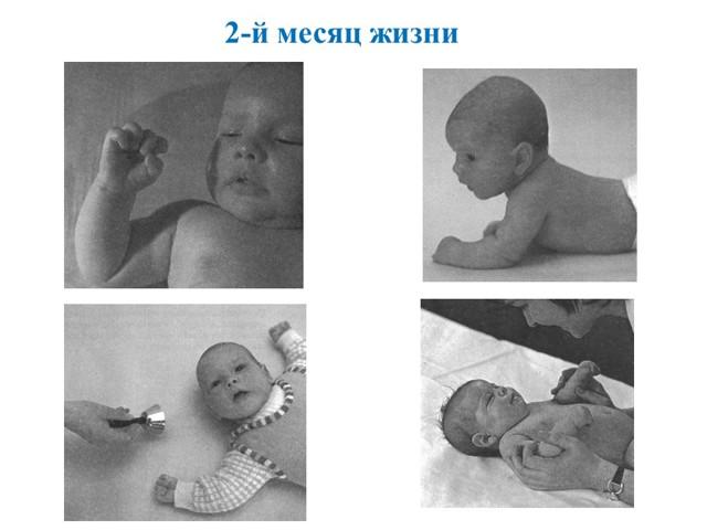 Развитие ребенка по месяцам до 1 года: календарь, таблицы и этапы по ВОЗ