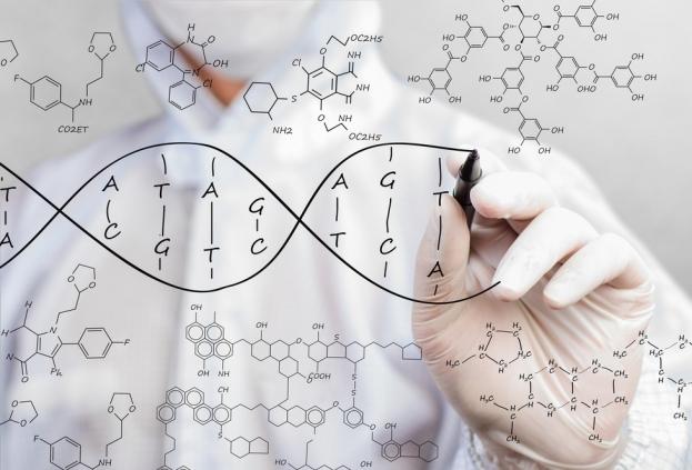 Неинвазивный тест Пренетикс: что можно кушать перед исследованием