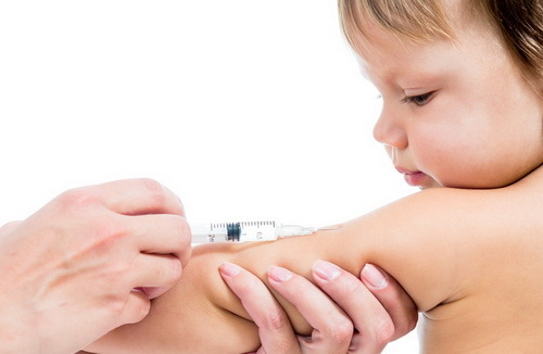 Пневмококковая прививка от инфекции детям до года: реакция, график вакцинации, побочные действия