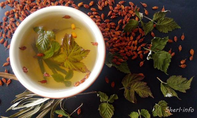 Листья малины при беременности перед родами и на поздних сроках: как заваривать и пить?