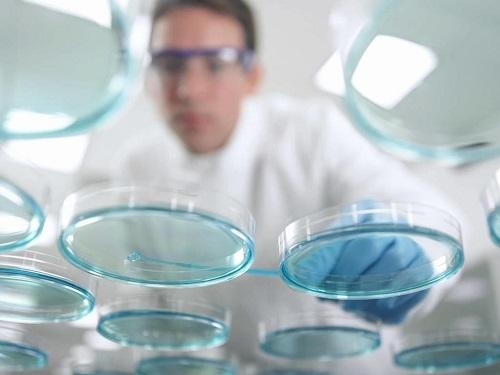 ЭКО в естественном цикле – что это такое, чем лучше процедура без стимуляции яичников?