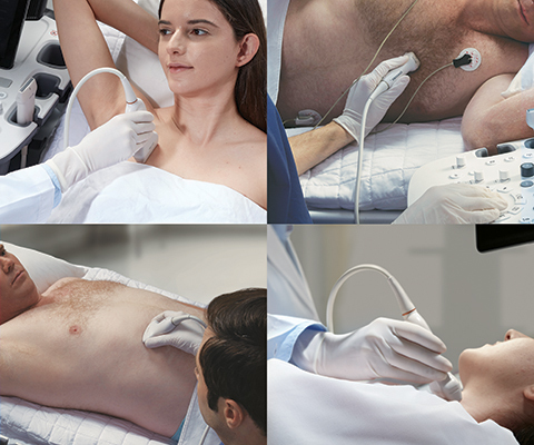 Гипоплазия носовой кости у плода: что это значит, какие нормы с 12 недели беременности в таблице?