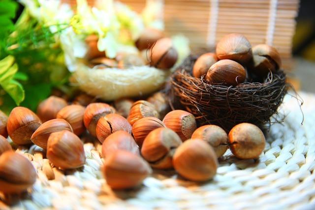 Орехи при беременности – польза и вред: можно ли есть грецкий, бразильский, мускатный и другие?