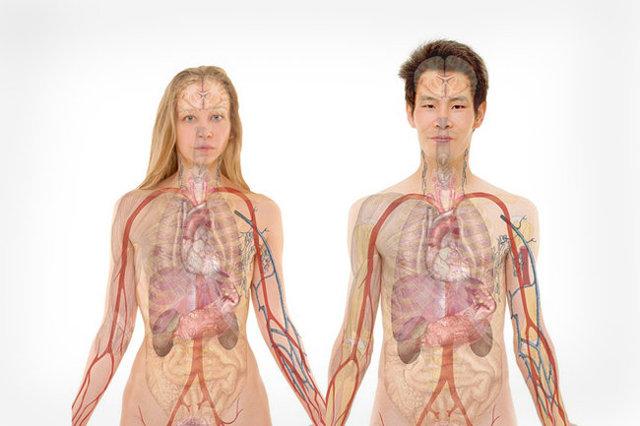Болят почки при беременности: что делать при проблемах с правой или левой, как лечить болезнь?