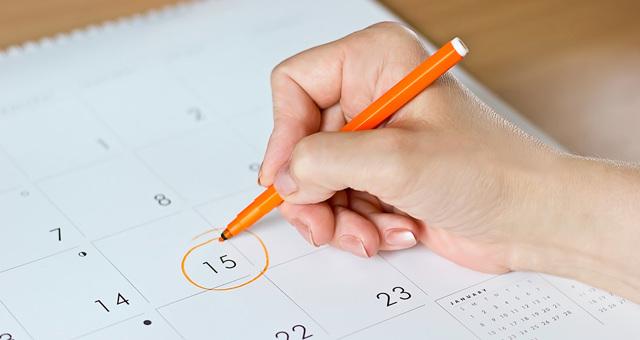 На каком сроке можно определить пол ребенка: во сколько недель точно видно на УЗИ?