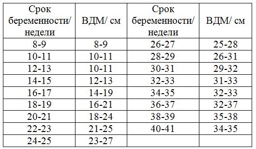Высота стояния дна матки по неделям беременности: таблица показателей нормы