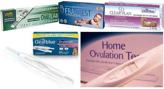 Киста желтого тела при беременности: когда можно забеременеть после овуляции?