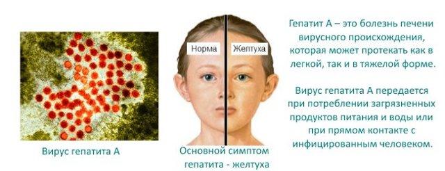 Прививка от гепатита А детям: схема вакцинации, побочные эффекты, противопоказания