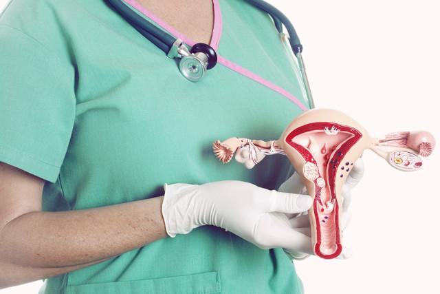 Короткая шейка матки при беременности: что делать, может ли удлиниться?