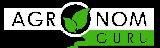 Брусника при беременности: применение ягод, листьев, брусничного морса и отвара на разных сроках