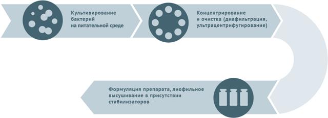 Импортная вакцина АКДС и российская: состав, названия, выбор лучшего аналога