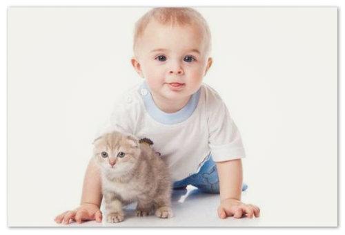 С какого возраста можно давать ребенку коровье молоко: прикорм грудничка