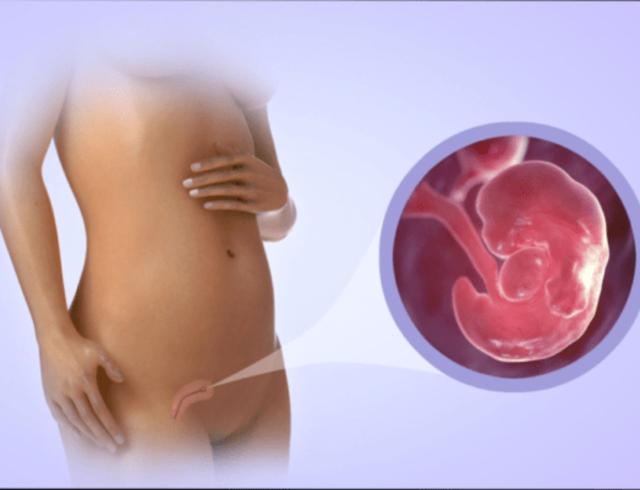 Первая неделя беременности: признаки и ощущения женщины на этом сроке